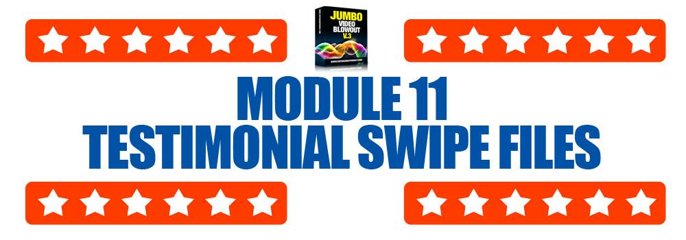 Module11-TestimonialSwipeFiles